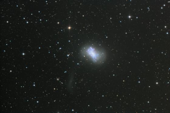 NGC_4449_crediit_Francis_Longstaff_-prv