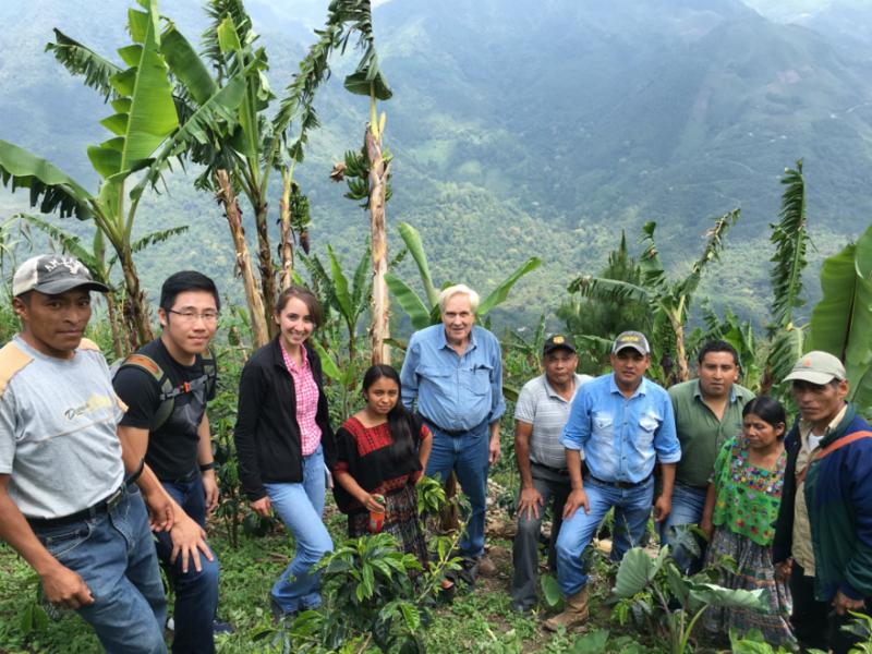 Coffee Growers Alta Verapaz Guatemala