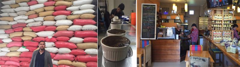 UCLA Anderson Guatemala coffee field study